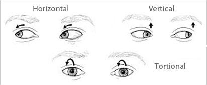 nystagmus treatment - vision yoga, Skeleton